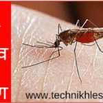 dengue ke lakshan in hindi
