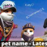 free fire pet name